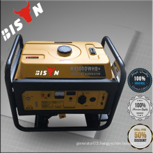 BISON China Taizhou 5KW Powerful 5000W Gasoline Generator Armature Parts