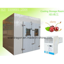 Cooling Storage Room for Cherry with Zanotti Monoblock Unit