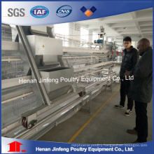 Automatic Poultry Equipment for Chicken Breeders Farm Use