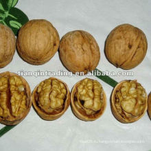 Китайские грецкие орехи в Shell