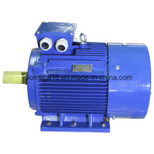 Y2 Series 3-Phase Electric Motors for Industry