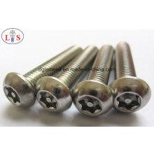Parafuso 304 de aço inoxidável / parafuso contra-roubo / parafuso com de grande resistência