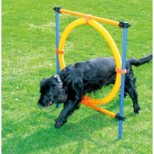 Dog Agility Exercise Training Equipment