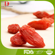 Lycium barbarum polysaccharides Goji Berry/red wolfberry