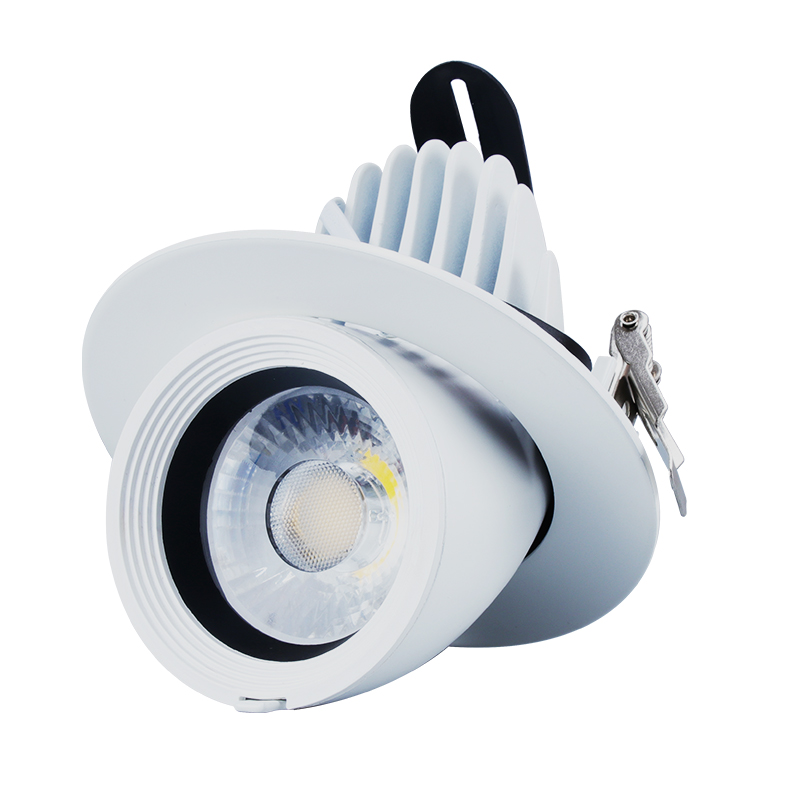 Round Cob Downlight