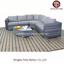 Grau Rattan Sofa Set für Outdoor (1503)