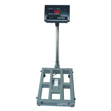 Balanza Platforma 30kgs ein 1000kgs