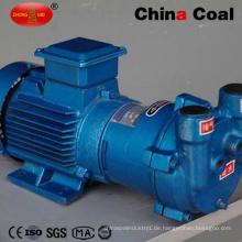 Hersteller Preis 2BV-2061 Serie Wasserring Vakuumpumpe zum Verkauf