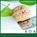 Nourriture organique alibaba fournisseur d'or écorces de noix écrasées