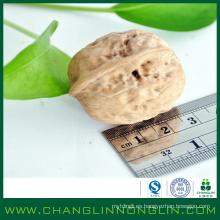 Alimentos orgánicos alibaba oro suministrador machacado nuez cáscaras
