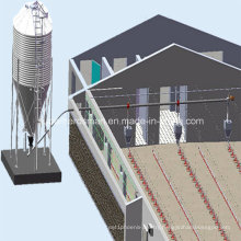 Automatic Full Set Chicken Farm Equipment for Poultry Farming House