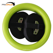 Wholesale Factory Fitness Colorful ABS Gym Ring