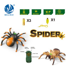 Rc spider toy, RC insect toy,rc animal toy