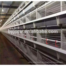 Top Selling Chicken Breeding Equipment en venta