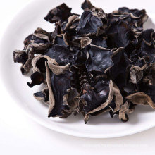 Dried Agaric from China