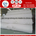 Europe Standard Polyester Needle Punched Nonwoven Geotextile/Nonwoven Geotextile
