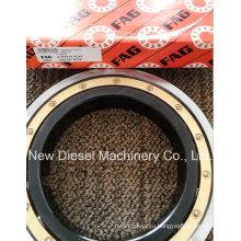 Подшипник двигателя дизельного двигателя Mtu 396 (565635B 5509810725)