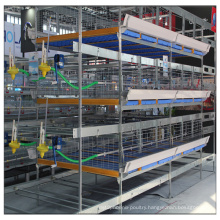 Chicken Farming Equipment H Type Poultry Shed for Broilers