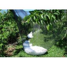 Professional Plastic Anti Hail Netting for Fruit Tree Shade