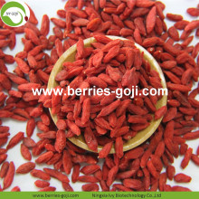 Na sprzedaż Anti Tumor Healthy Common Goji Berry