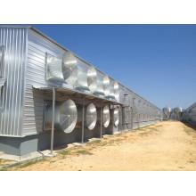 Casa de pollo de capa cerrada / cobertizo para aves de corral (KXD-SSB64)