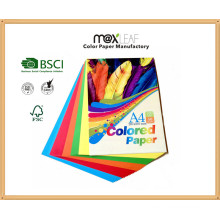 150GSM A4 Taille Bright Color Bristol Board (CB-A4-50FM2)