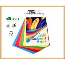 150GSM A4 Size Bright Colour Bristol Board (CB-A4-50FM2)