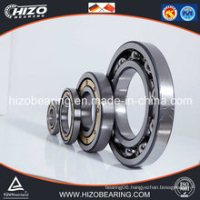 Bearing / Flanged Bearing / Deep Groove Ball Bearing (6044/6044-2RS/6044-2Z/6044M)