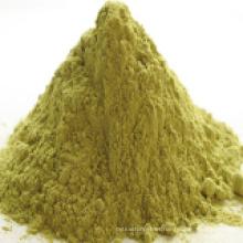 Polvo de semilla de hinojo con alta calidad