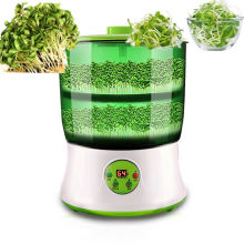 Home Best Seller Seed Growing Tray For Sale Machine Bean Sprouts