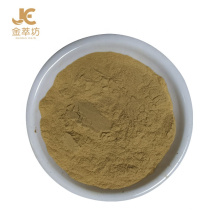 Neue Promotion 2020 heißes chinesisches Pflanzenextrakt-Zucchini-Pulver Cucurbita Pepo-Pulver