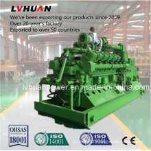 High Efficiency Cummins 300kw Biogas Generator Set Adopt Biomass, Methane, Marsh Gas, LPG