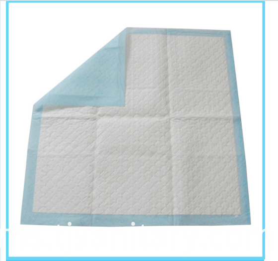 pet pad blue