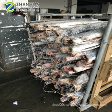 Seafrozen sailfish supplier hot sale seafood new catching