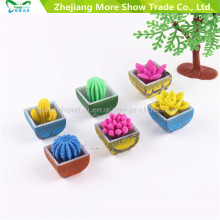 Novidade Água Crescer Plantas Mini Cactus Flor Crescer Pet Plantas Brinquedos