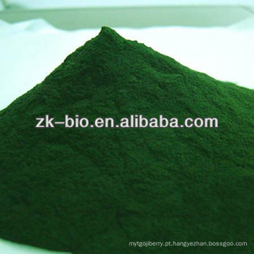 Chlorella Natural de alta qualidade