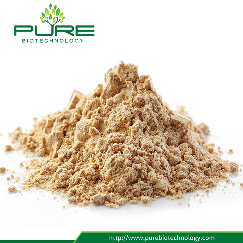 100% Natural Panax Ginseng Root Extract
