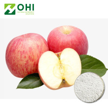 100% Natural Apple Juice Powder