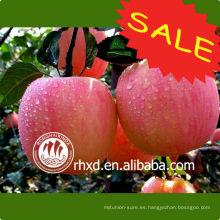 Manzanas rojas en la parte superior de frutas frescas