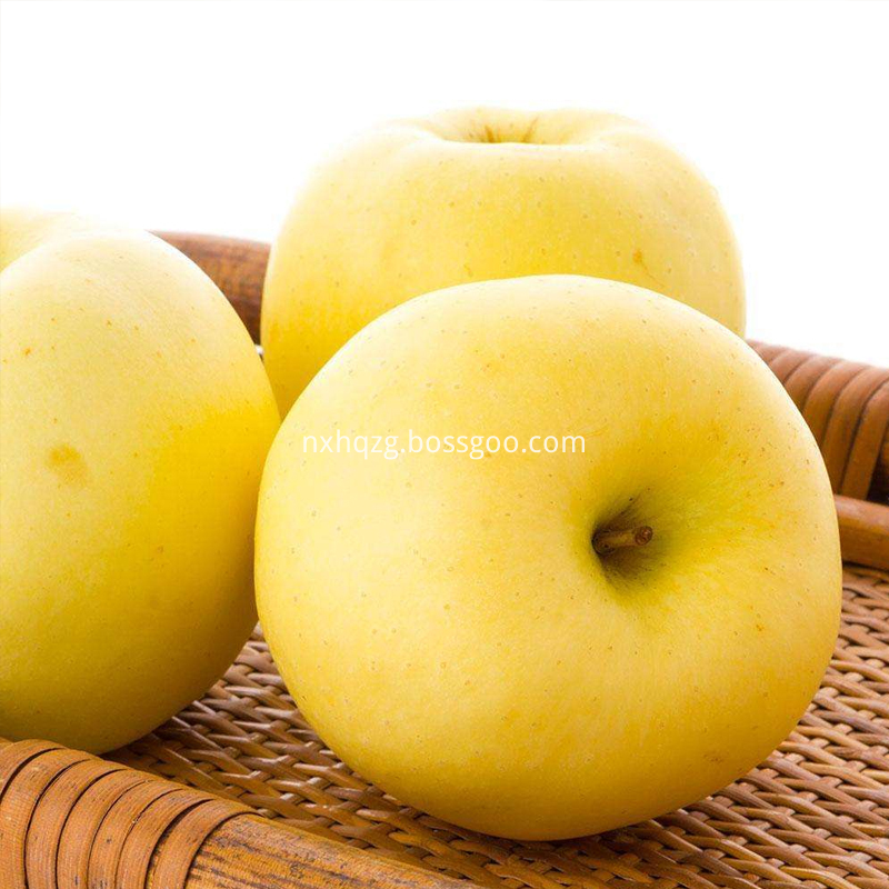 Golden Delicious 90 Specifications