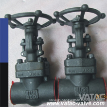ANSI Cl300#/Cl600#/Cl800# A105n Forged Steel Gate Valve