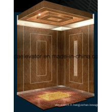 Ascenseur de passagers avec bonne qualité et prix compétitif (JQ-N026)