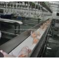 Geflügelverarbeitungslinie von Förderband