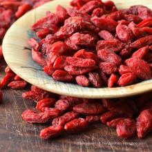 Certified Organic AD Secagem Wolfberry Fruit Medlar Goji