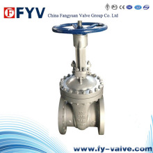 API Wcb Flanged Wedge Gate Valve Manual
