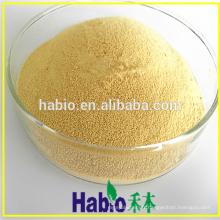 CAS: 9001-62-1 lipase enzymatique en poudre pour améliorant le pain