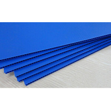 Good Quality for Flame Retardant Insulating Slab PP Corrugated Plastic Partition supply to Netherlands Supplier