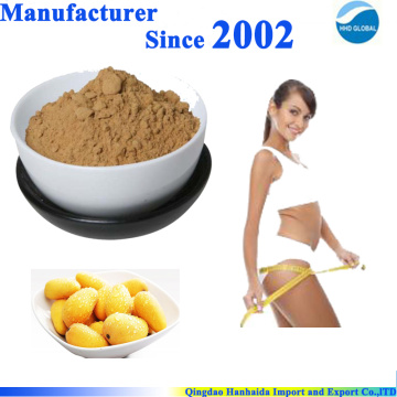 Natural african wild mango seed powder extract