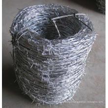 Alambre de púas de hierro galvanizado caliente-sumergido en el mejor precio