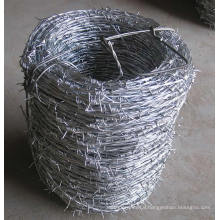 Hot-Dipped Galvanized Iron Barbed Wire in Best Price